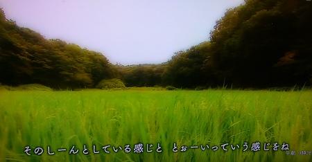IMAG0819 (450x234)