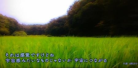 IMAG0820 (450x224)
