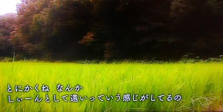 IMAG0822 (450x226)