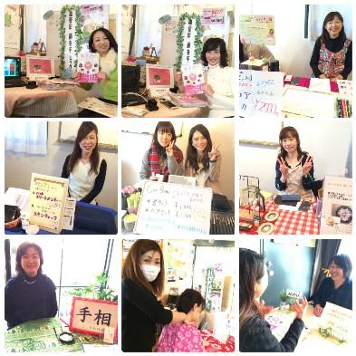 collage_photocat 美活