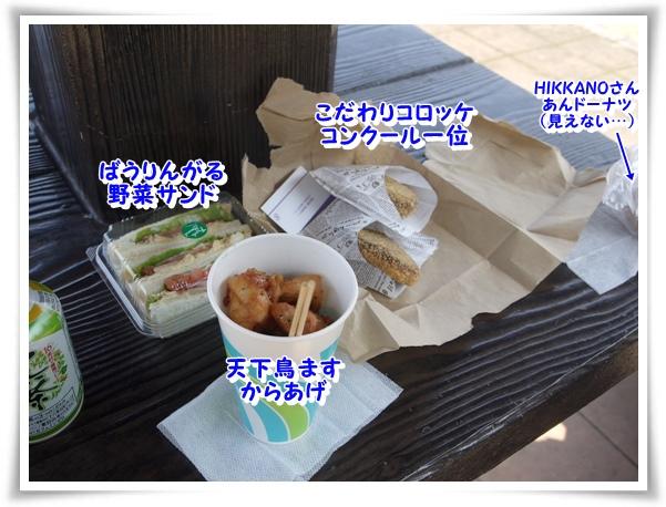 P1120819_1.jpg