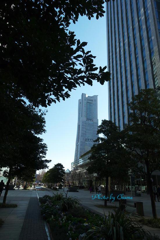 橫浜-912