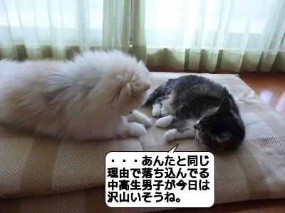 20160215_112132.jpg