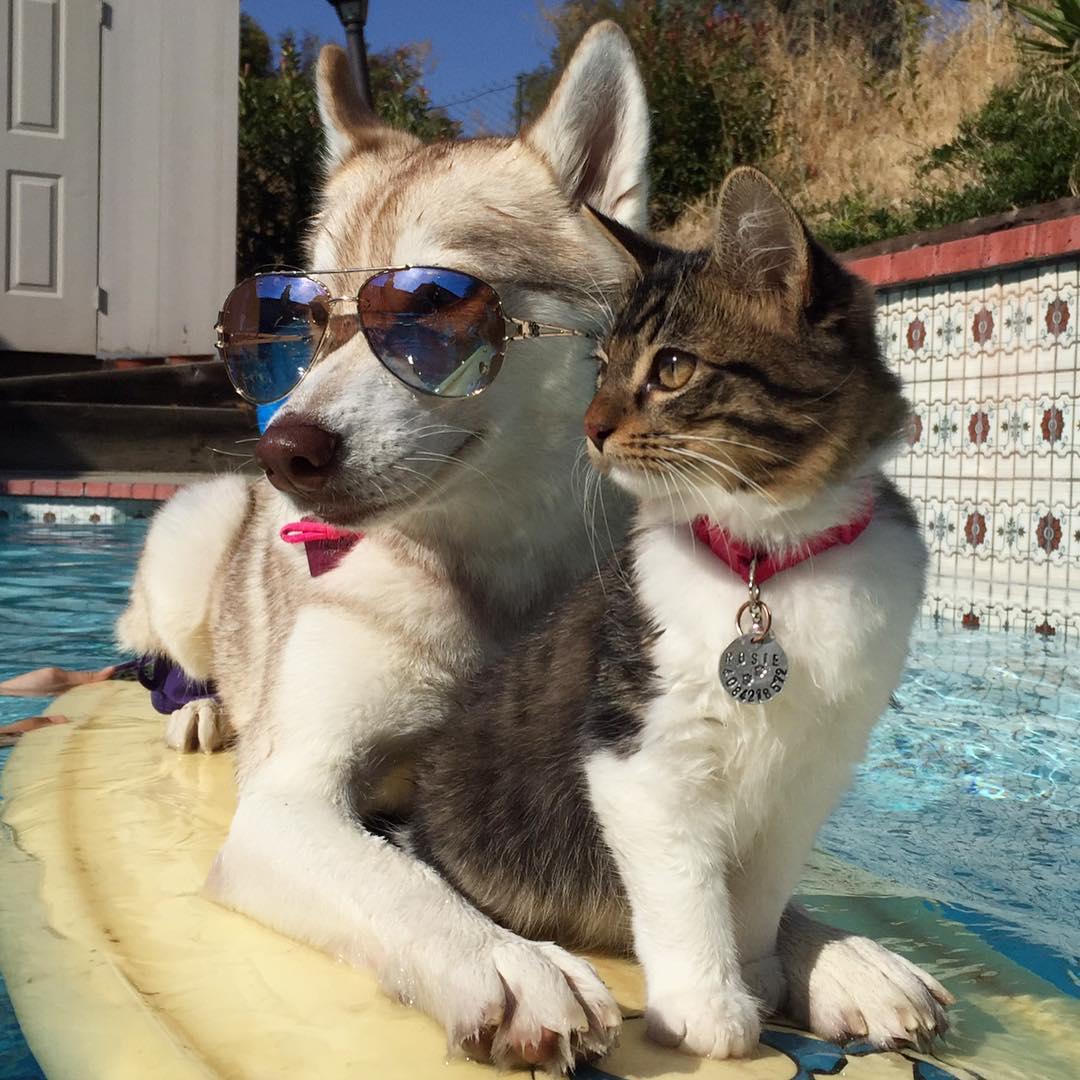 プールの上で親子ショット