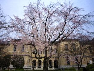 京都府庁2016春