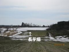 blog160320_1.jpg