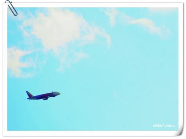 photo694.jpg