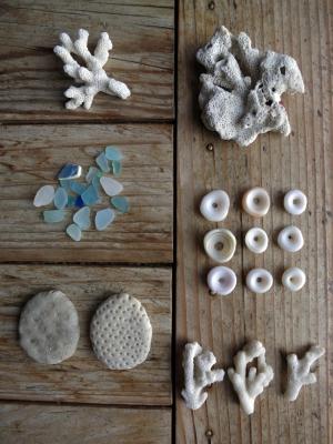 160308-1=珊瑚貝殻ビーチグラスfm塚崎