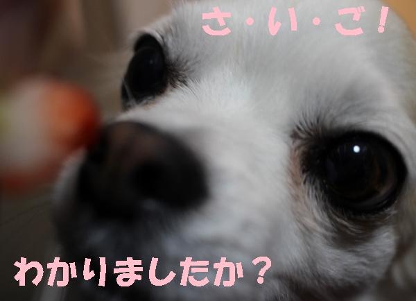 いちご11