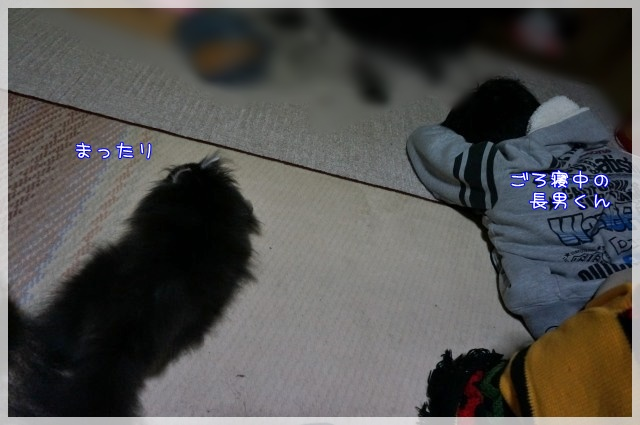 帰省17 16-03