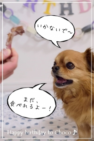 DSC_8348.jpg