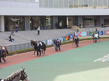 中京競馬場2
