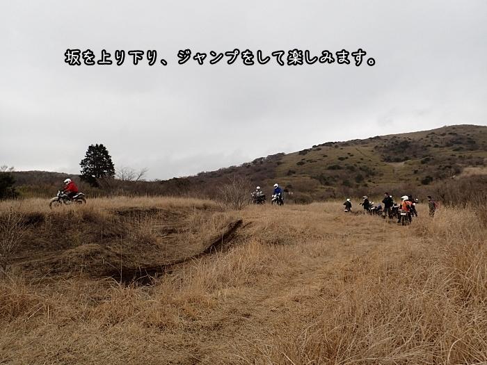 P3200228.jpg