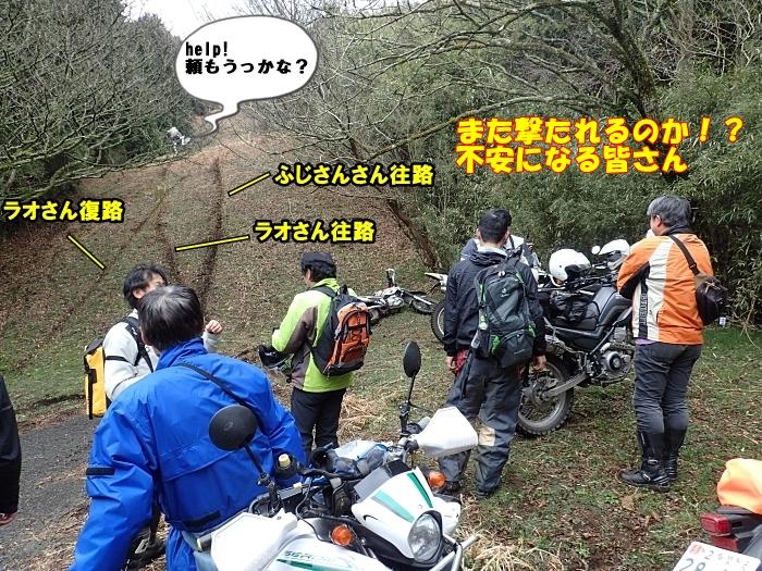 P3200244a.jpg