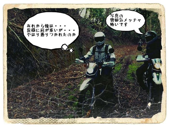 P3270024aQQ2.jpg