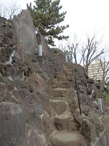 P3050966  1603品川神社