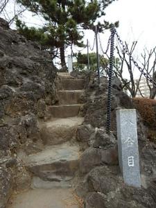 P3050969  1603品川神社