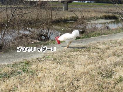 二太2016/03/04-2