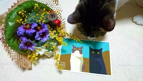 花束とカード