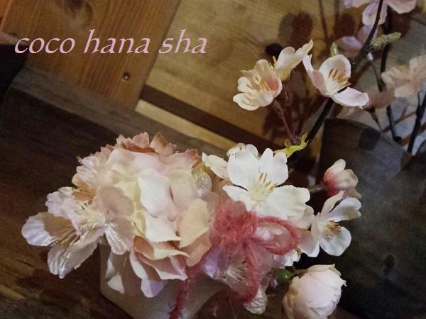 桜ミニ600-1