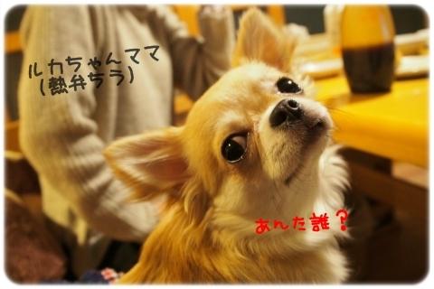 Tちゃん遊びに来てくれてありがとう (3)
