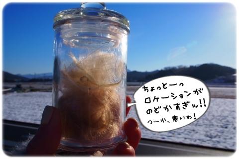 そうだ、粉の国に行こう (4)