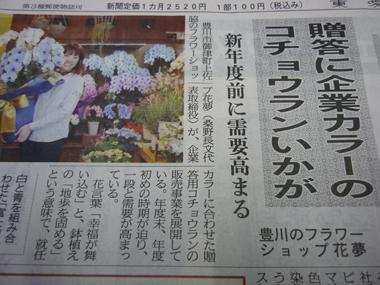 東愛知新聞 青い胡蝶蘭 松浦園芸 豊川 花屋 花夢