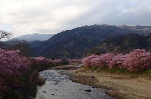 kawadu5.jpg
