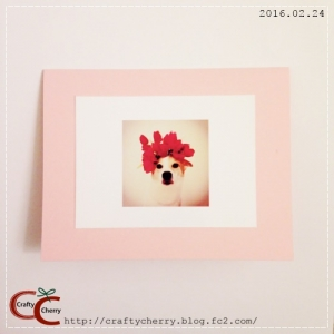 Crafty Cherry * sakura pink