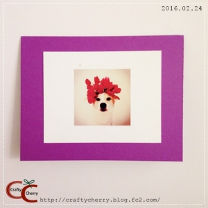 Crafty Cherry * sakura purple