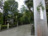 2016,4 寒川神社5