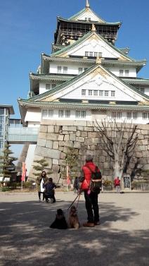 お城② (212x377)