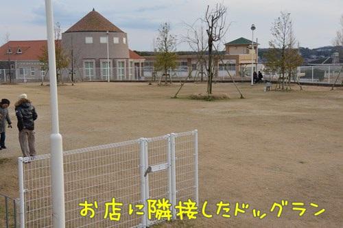 RDSC_0971_Y