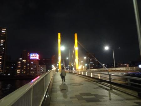 066隅田川の新大橋