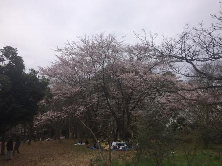002行田公園