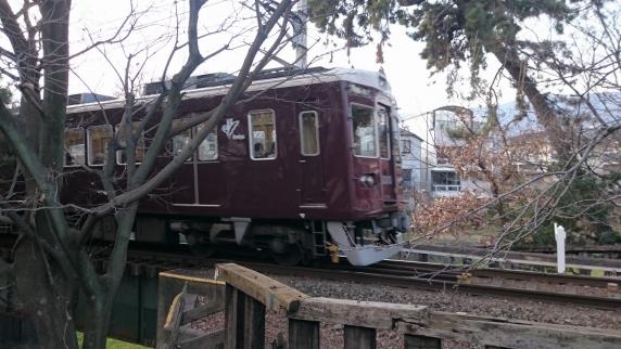 2016/1/11 夙川公園