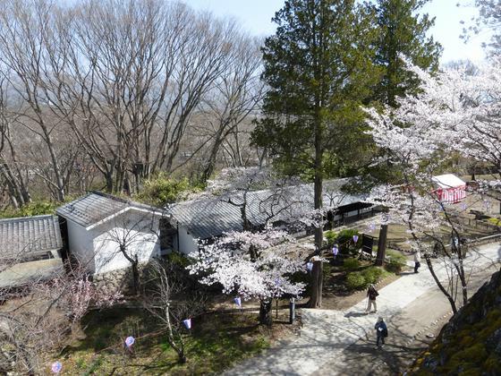 天守台より藤村記念館方向を眺める