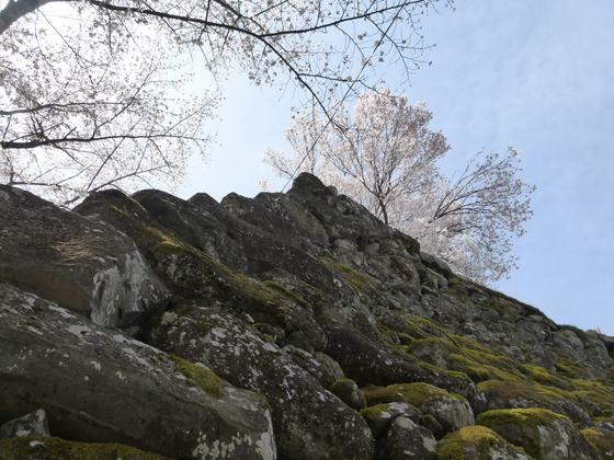 真下から見上げた天守台の石垣
