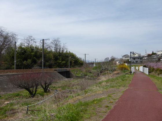 しなの鉄道沿いに続く道