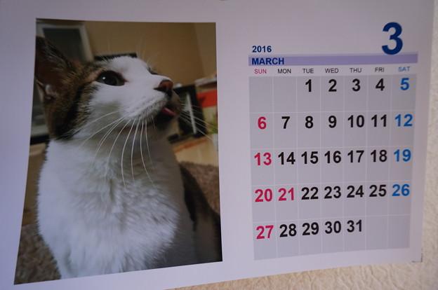 2016.3のカレンダー
