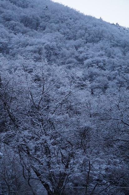 雪山その1