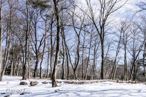 嶺公園の残雪