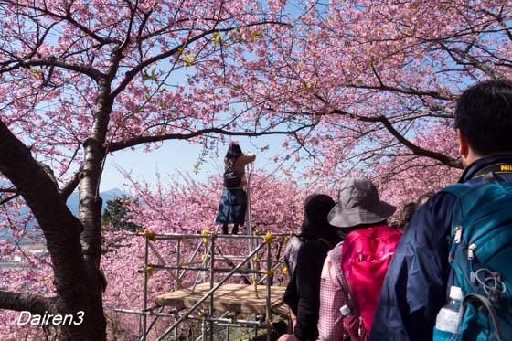 富士山撮影ポイントの撮影脚立