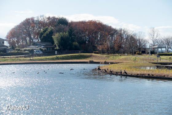 邑楽町中央公園