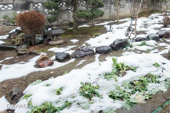 わが庭の残雪