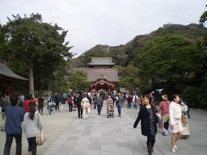 鶴岡八幡宮 6