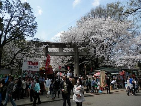 上野東照宮 11