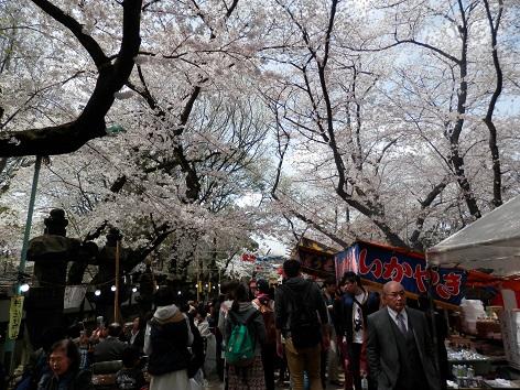 上野東照宮 16