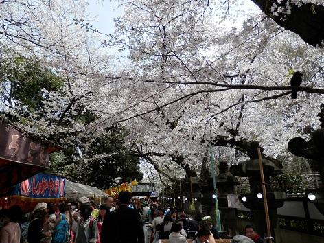 上野東照宮 23