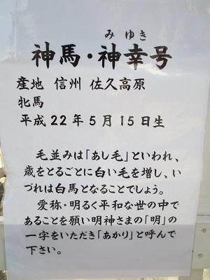 0308AKMJ13.jpg
